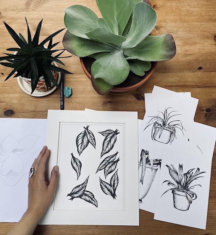 Mindful Plant Drawing Workshop in Battersea image