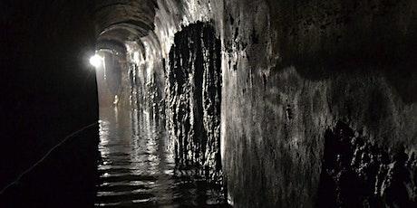 Dante, la Diana e gli acquedotti medievali senesi biglietti