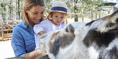 Discover The Zoo & Aviary tickets