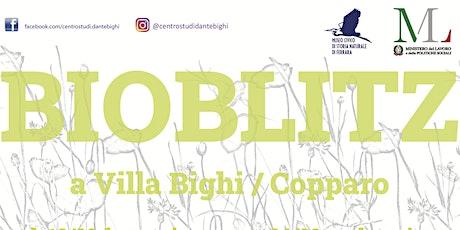 Bioblitz a Villa Bighi biglietti