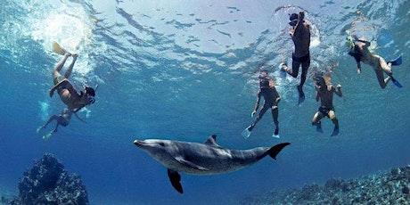 Vitamin SEA: la salute del mare per la salute dell'uomo biglietti