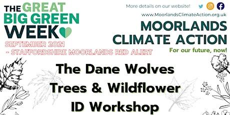 Tree & Wildflower Identification Walk with Dane Wolves tickets
