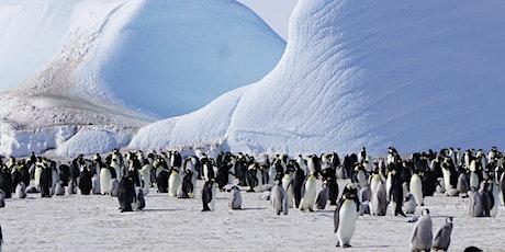 Antartide: dall'arte alla scienza biglietti