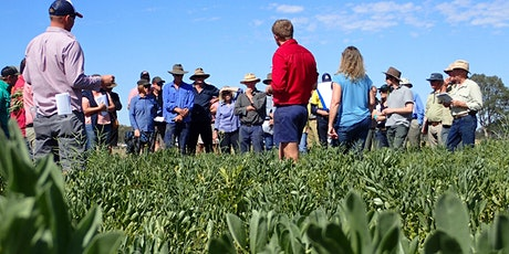 Gippsland Agricultural Group - Spring Field Day tickets