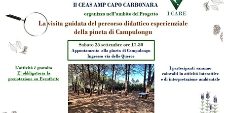 Visita guidata del percorso didattico esperienziale  pineta di Campulongu biglietti