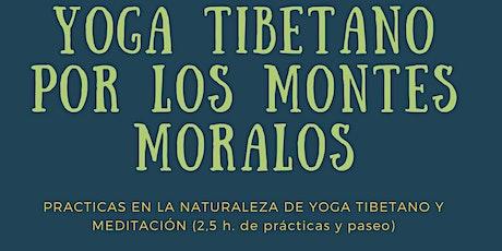 Ruta con Yoga Tibetano en la naturaleza entradas