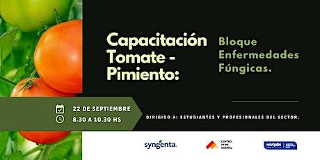 Capacitación Tomate-Pimiento: Bloque Enfermedades Fúngicas. entradas