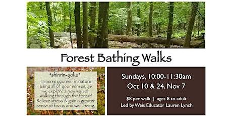 Forest Bathing Walk tickets