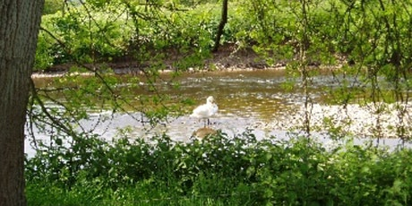 The geology of the River Exe tickets