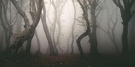 Outdoor Haunted History Walking Tours of Doylestown! tickets