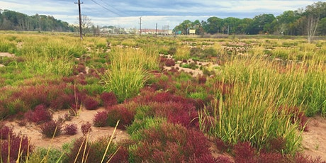 Tidal Wetland Restoration & Ecosystem Services in the Bay of Fundy Dykeland tickets