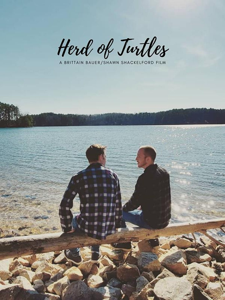 The Paus Premieres Festival Presents: 'Herd of Turtles' image