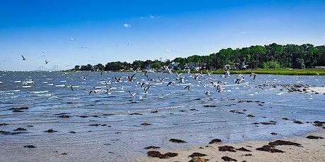 Birds of The Inland Bays tickets