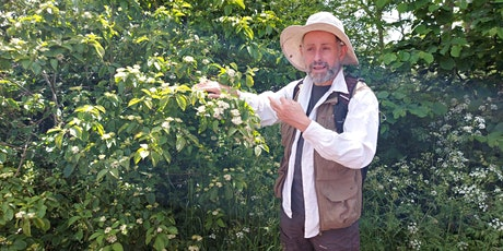 Free guided autumn tree walk led by tree expert Russell Miller tickets