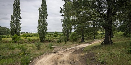 La Balade de Pierrelaye, une forêt pour le 21e siècle. billets