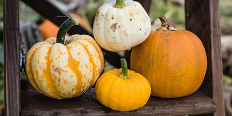Pick Your Own Pumpkins tickets