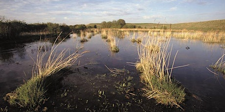 A tour of the RSPB Fairburn Ings Nature Reserve (RB) tickets