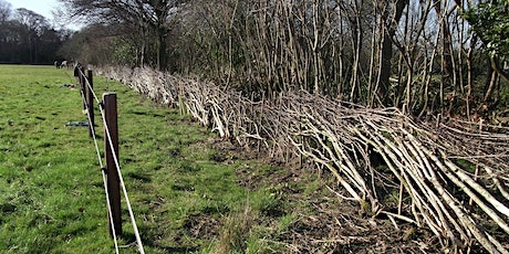 Hedgelaying weekend tickets