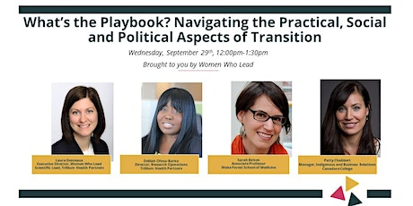 Navigating the Practical, Social and Political Aspects of Transition tickets