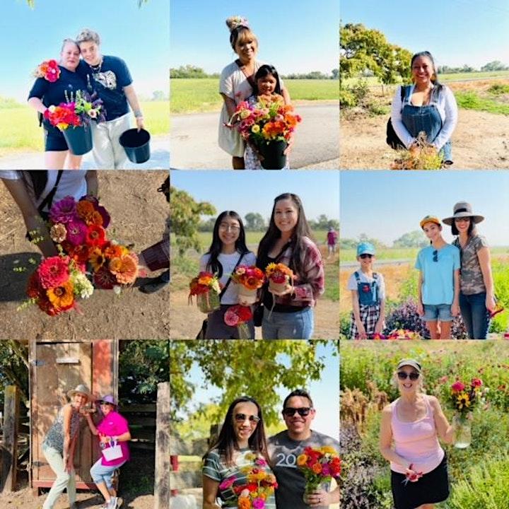 Public Flower Picking Days at Stone Lake Farms image