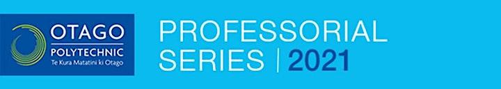 Federico Freschi's Professorial Lecture image