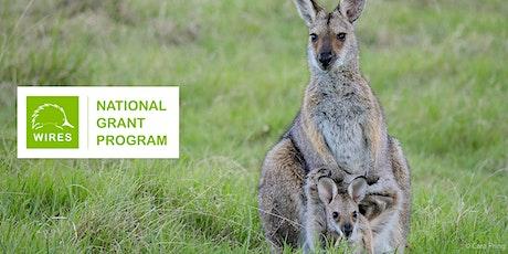 WIRES National Grant Program Webinar tickets