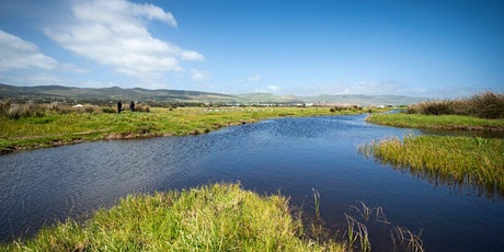Bonus Planting Day @ SA Water WWTP to enhance the Aldinga Washpool tickets
