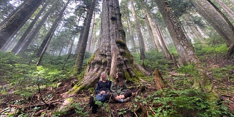 Dr. SUZANNE SIMARD: the Disappearing Mother Trees tickets
