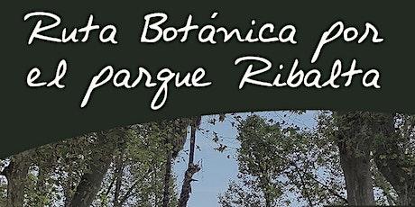 Ruta Botánica por el Parque Ribalta de Castelló entradas