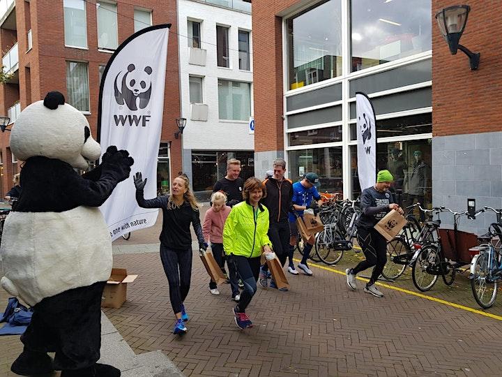 Afbeelding van Haarlemse Plogdag