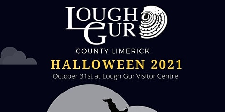Lough Gur Storytelling for Teens & Adults tickets
