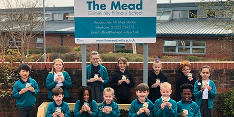 The Mead (Hilperton) Open Days tickets