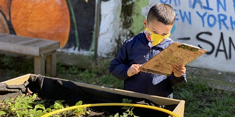 Outdoor Learning for NYC Schools (K-12) (Virtual Workshop) tickets