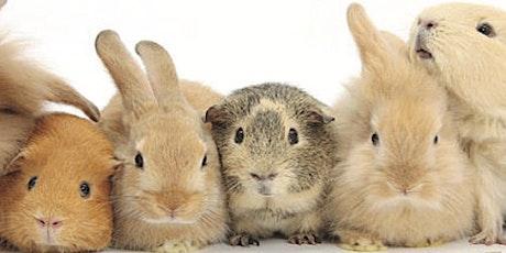 Martin County 4-H Rabbit Cavy Workshop tickets