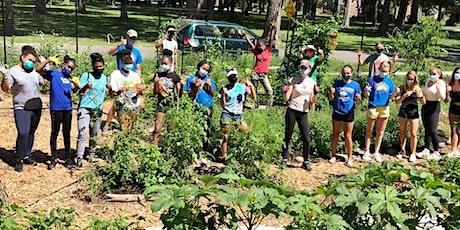 Volunteer in the garden! tickets