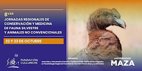 8ºJorn. de Conservac. y Medicina: Fauna Silvestre y Animales No Convencion. entradas
