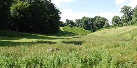 Netwalking with Sevenoaks Chamber of Commerce & Thackray Williams tickets