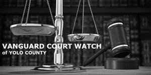 Vanguard Court Watch Annual Dinner: Preventing...
