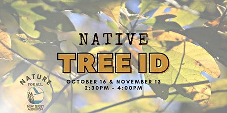 Native Tree ID tickets