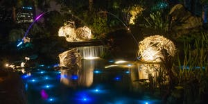 Autumn Lights Festival 2015