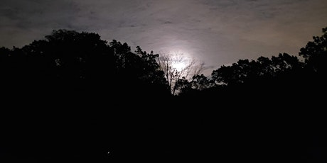 Full Moon Hikes for Families & Adults tickets
