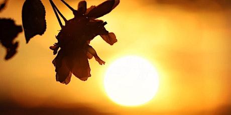 Holy Fire® III Reiki  1 Training tickets