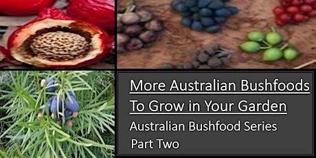 More Australian Bush Foods to Grow - Part 2 tickets