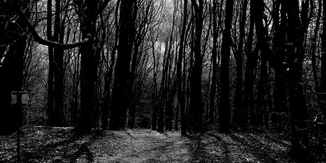 Fright Night Halloween Hike - A night time walk in the woods....... tickets
