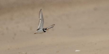 Beach Birding Walk tickets