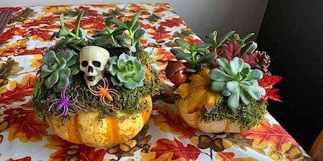 Pumpkin Succulent tickets