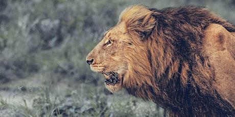 Prophetic Summit - The Lion Roars tickets