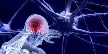 The Neuroscience of Trauma and Resilience Level 2.5 (Advanced Beginner) tickets