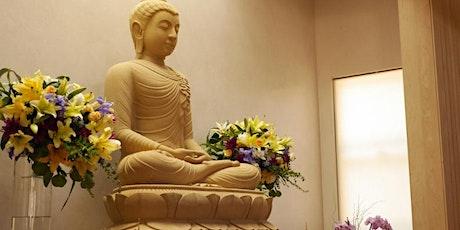 Abhayagiri 2021 Online Thanksgiving Retreat tickets