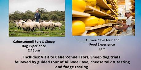 Burren Food Experience 3 tickets